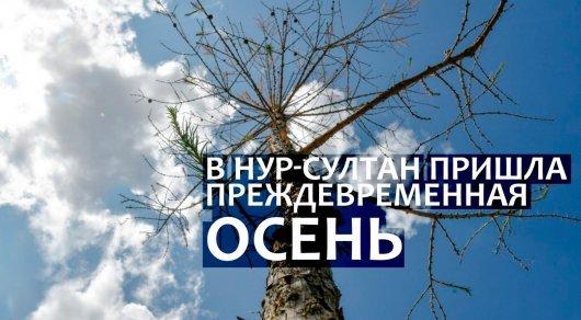 photo_1694