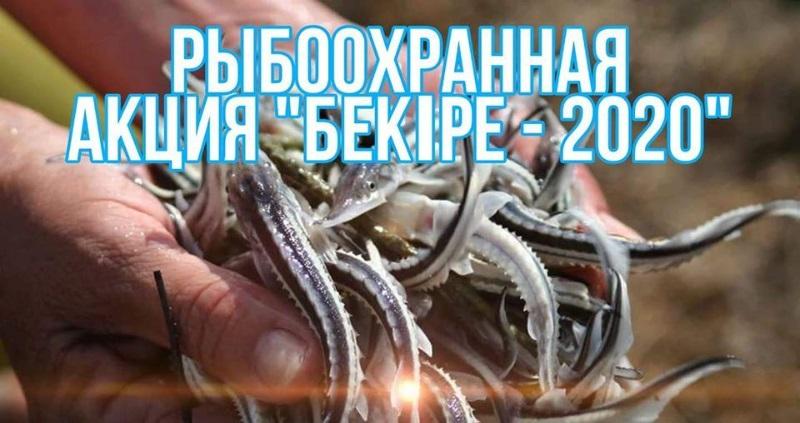 200402012833648e