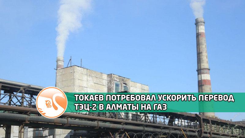 photo_355502